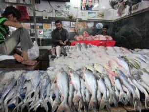 魚の並べ方が、インドらしいですね。中には、氷も敷いてないお店もありました