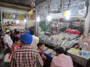 マーケットの奥には、魚屋さんが、並んでいました