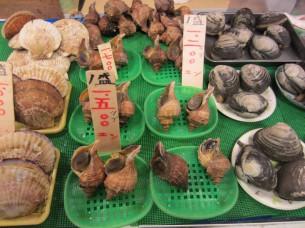 貝類も見事な物ばかりでした