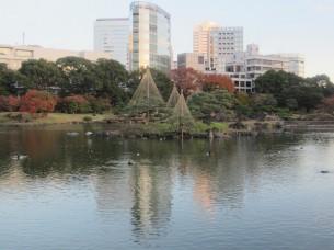 日本の庭園文化は、世界に誇れますね