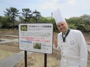 0稲取植樹祭10