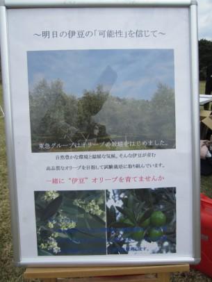 0稲取植樹祭13
