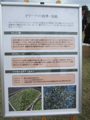 0稲取植樹祭14